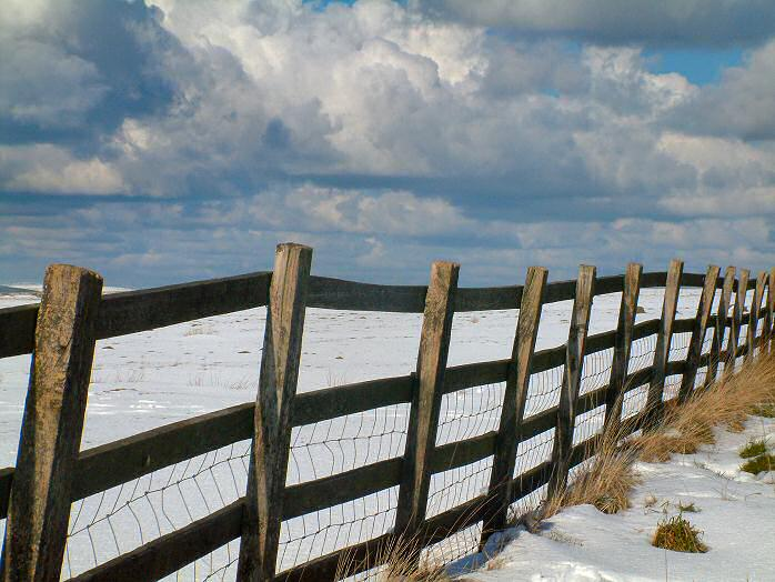 Snow, Bodmin Moor, February 2004