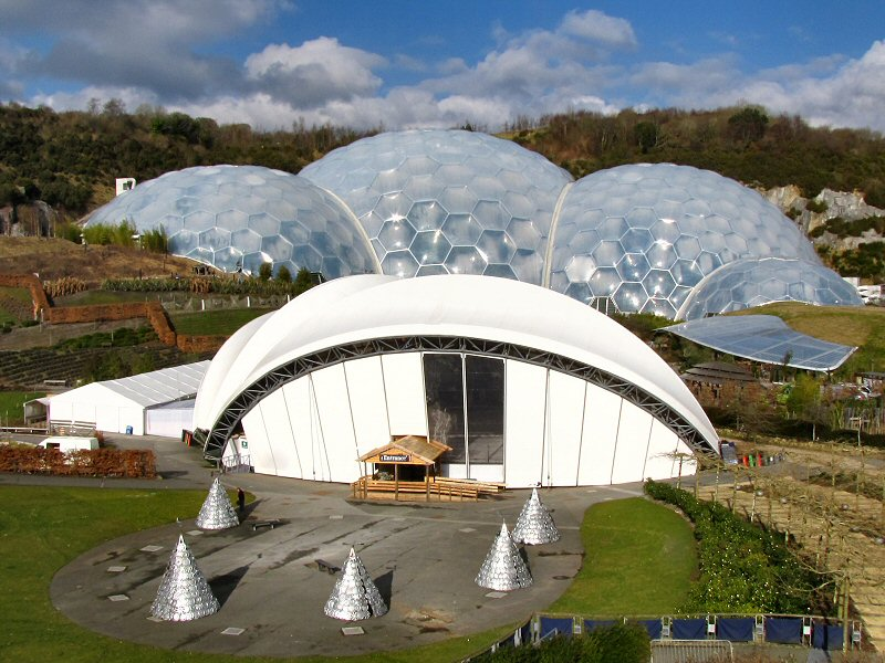 The Rainforest Biome and         Ice Rink
