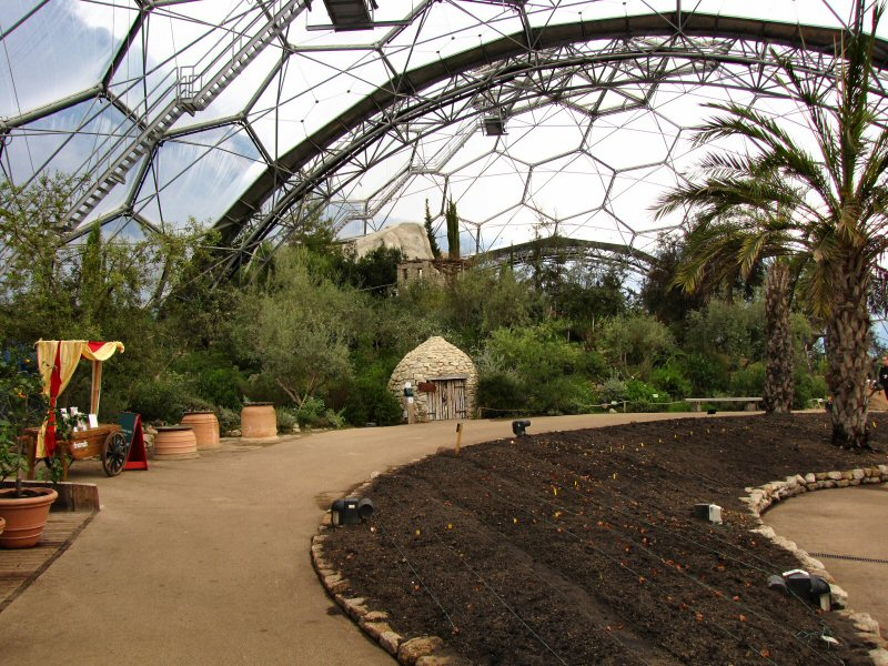 Inside the Mediterranean Biome