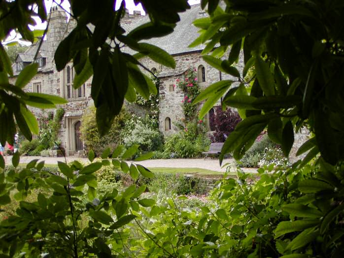 Cotehele, the terraced garden